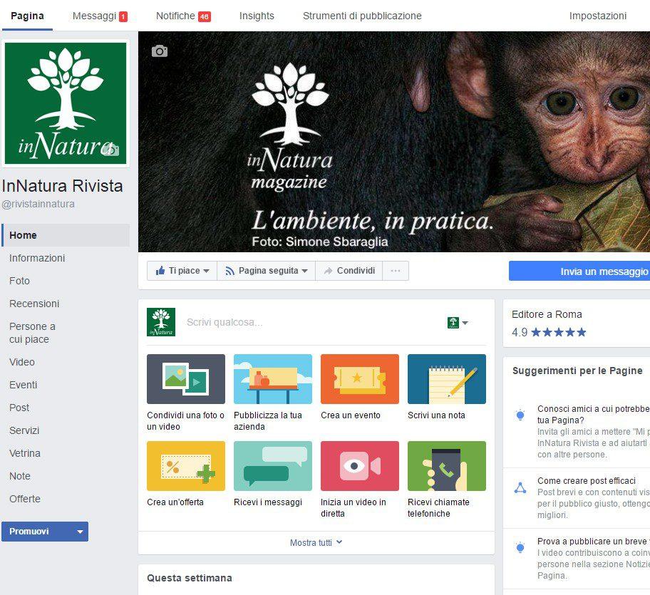 Social Marketing Roma - gestione pagine facebook roma - social media marketing roma - social media management roma - gestione profili instagram